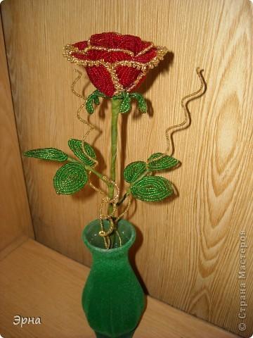 Роза с позолотой