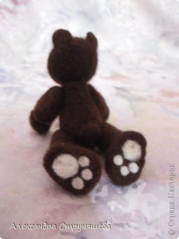 Шоколадный мишка Митяй фото 6