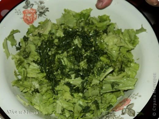 Весна! У зеленоежек обостряется аппетит при виде разного рода листочков! Тем более вкусных! А как их сделать еще вкуснее?  фото 6