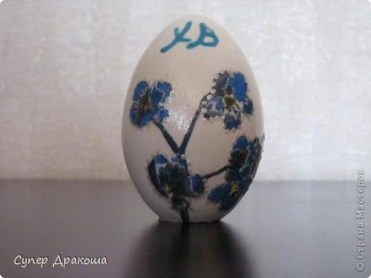 Все яйца фото 10