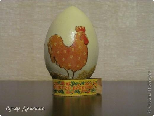 Все яйца фото 2