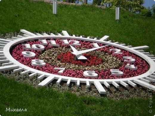 Я живу в городе Черновцы,Украина, в этом городе живу уже 7 лет, но весной заметила что у нас в городе очень много красивых тюльпанов. фото 7