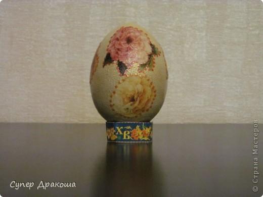 Все яйца фото 5