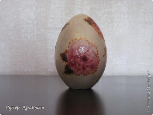 Все яйца фото 8