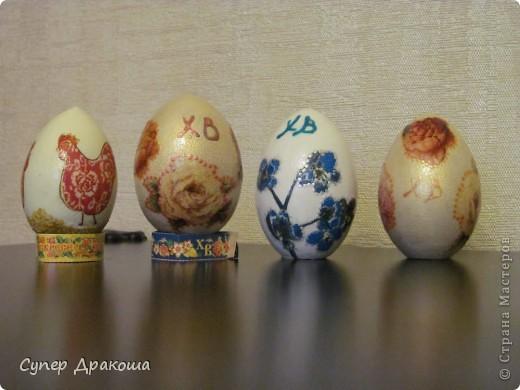Все яйца фото 1