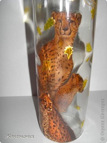 Вот такие кошечки получились на бутылочке для масла) фото 2