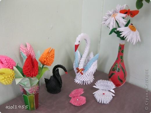 Лебеди,Ракушки с жемчугом,тюльпаны ромашки. фото 1