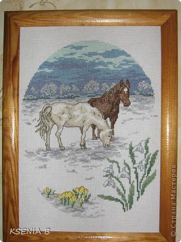 А за околицей весна, работа выполнена по схеме из журнала Вышиваю крестиком, автор схемы Мария Диаз. фото 1