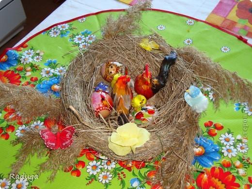 Гнездо для пасхальных яиц фото 1