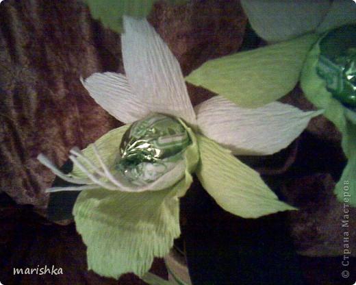 Мне очень захотелось попробовать сделать сладкие орхидеи. Опыт уже кое-какой имеется. Вот я и отправилась в цветочные магазины, интернет... От разнообразия форм и цвета я просто растерялась.Чем больше я смотрела на эти необыкновенные растения, тем больше удивлялась и восторгалась.И в итоге набралась наглости и вывела свой сорт , надеясь,что меня сильно не побьют истинные ценители и знатоки этой красоты. фото 1