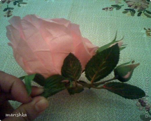 Было замечательное настроение и я решила сделать большие розочки. Первую,с диаметром цветка примерно 15 см, я сделала из гофрированной бумаги(гофр бумага для оформления букетов,более жесткая ,чем обычная гофрированная бумага). фото 8