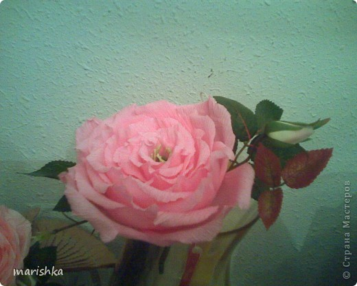 Было замечательное настроение и я решила сделать большие розочки. Первую,с диаметром цветка примерно 15 см, я сделала из гофрированной бумаги(гофр бумага для оформления букетов,более жесткая ,чем обычная гофрированная бумага). фото 4