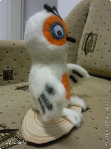 Эта сова-подарок моей подруге,которая увидев мои куклы попросила сову.Она собирает коллекцию разных сов.Вот такая получилась птичка. фото 2