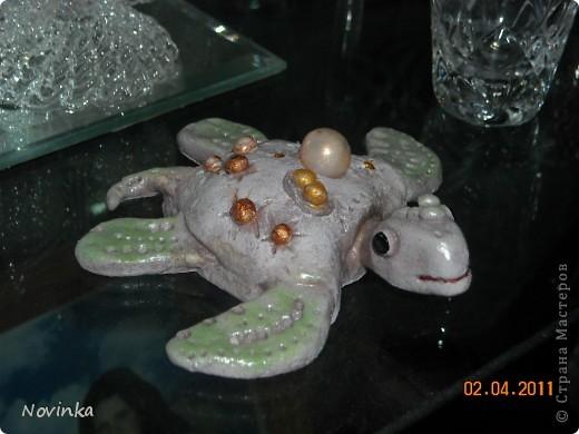 Вот такая черепашка получилась.Окраской не очень довольна. фото 1