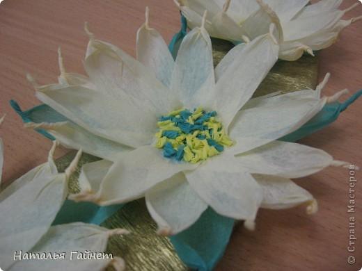 Подковка на счастье с цветами из креповых полосок.Цветы изготовлены из полосочек креповой гофрированной бумаги.Быстро делаются и довольно эффектно смотрятся. фото 2