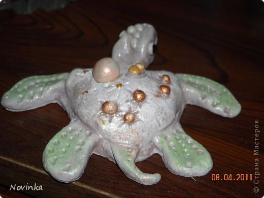 Вот такая черепашка получилась.Окраской не очень довольна. фото 2