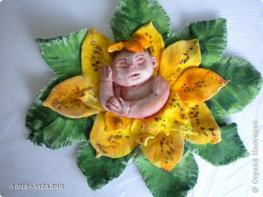 лилейный малыш фото 5