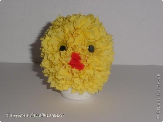 Подруга цыпленка фото 2