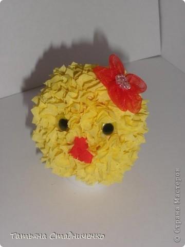 Подруга цыпленка фото 1