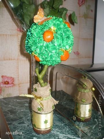 """Крона выполнена из лент в технике """"торцевание"""" , апельсины из соленого теста, ствол -обычная ветка найденная во дворе, обмотана тейп-лентой! фото 2"""