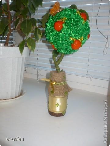 """Крона выполнена из лент в технике """"торцевание"""" , апельсины из соленого теста, ствол -обычная ветка найденная во дворе, обмотана тейп-лентой! фото 1"""