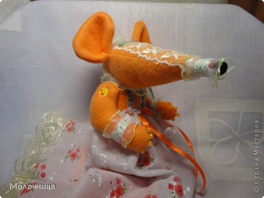Оранжевая Крысуля фото 4