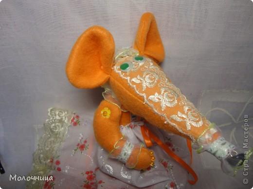 Оранжевая Крысуля фото 1