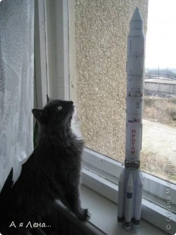 Ракета-носитель Протон И кот Димка фото 1
