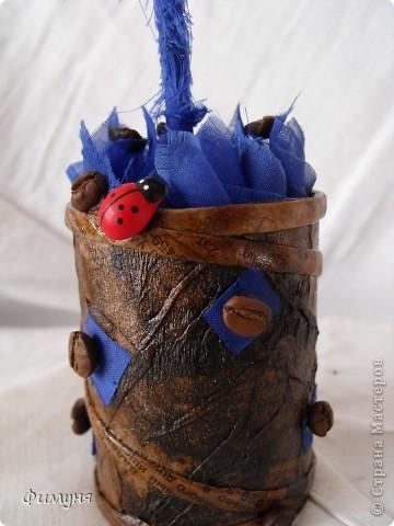 Кофейные деревья. фото 10