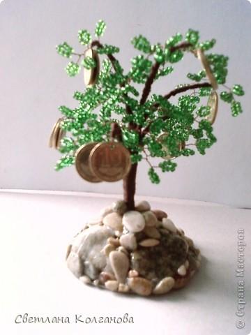Мое первое денежное дерево. Оно небольшое - 10 см в высоту, на нем 16 монеток. Подставку сделала из морских камешков, покрыла лаком.