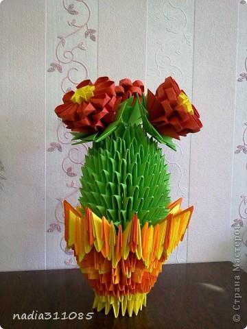 Долгожданный кактус) фото 2