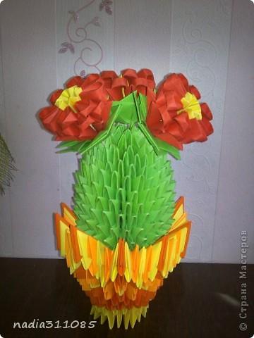 Долгожданный кактус) фото 1