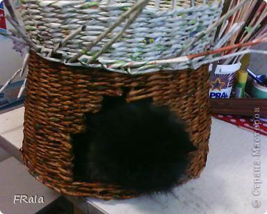 Домик для котов-фоторепортаж фото 7