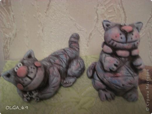 Позитивный котик. фото 2