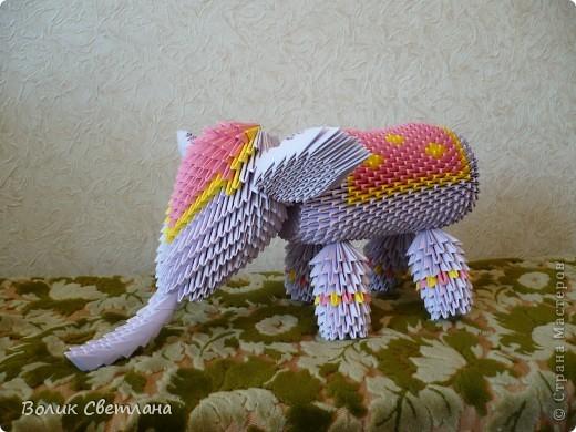 Слон собран по фото Галины Тиховой фото 1