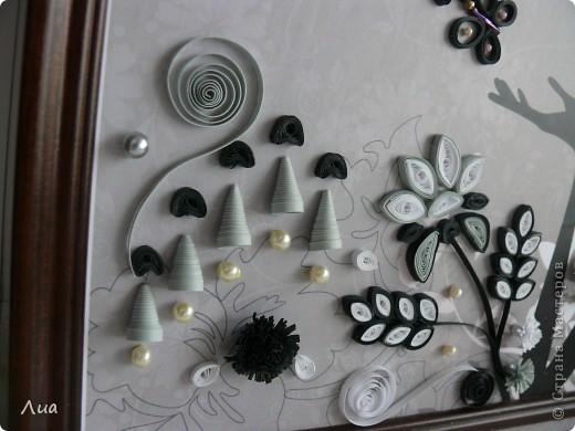Вот такая- теперь в черно-белом цвете -девочка фото 3