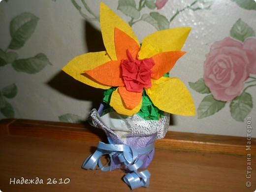 еще один кактус с цветочком фото 2