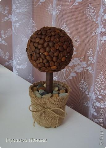 Каждой комнате по дереву! ))) фото 3