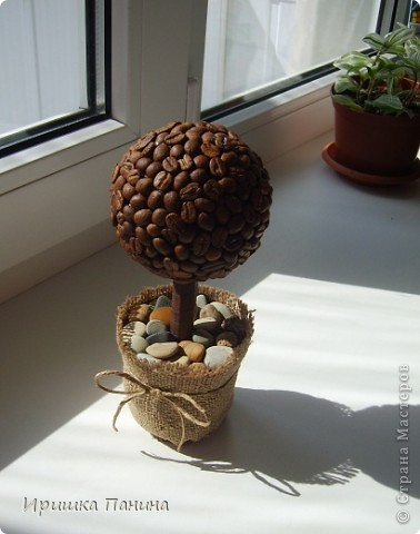 Каждой комнате по дереву! ))) фото 2