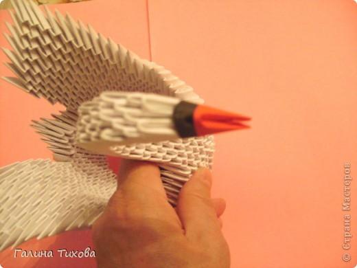 Свадебные лебеди. Мастер-класс. фото 14