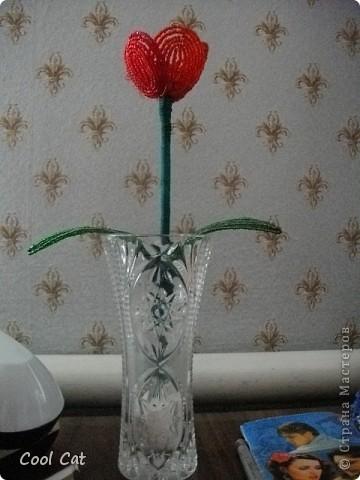 А это мой самый первый цветок из бисера фото 2