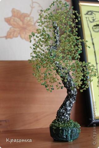 Вот и еще одна береза выросла в моей березово-бисерной роще. фото 1