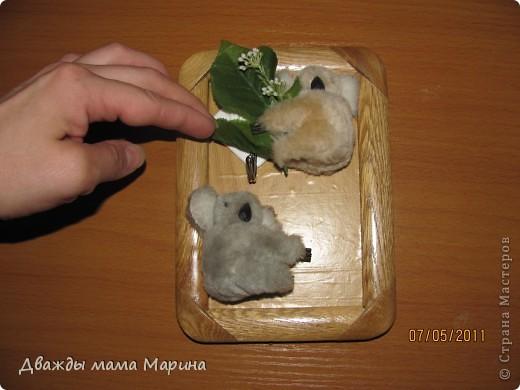 """Доброго времени суток всем!   Вот еще одна моя домашняя работа. КЛЮЧНИЦА """"КОАЛЫ"""" Были под рукой две маленькие коалы, в лапках которых раньше держалась фотография, но немного это поднадоело. Пришла в голову мысль их по-новому обыграть.  фото 6"""