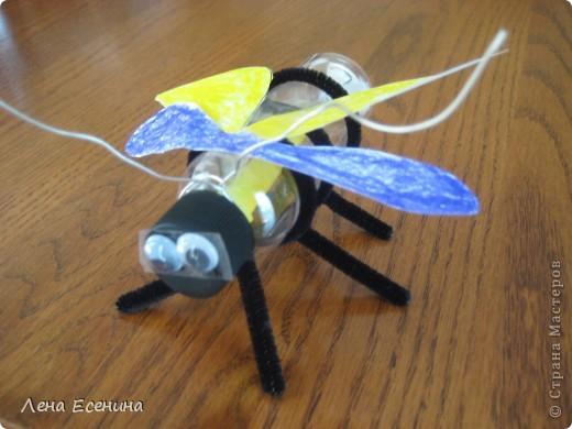 """Наша пчёлка делается просто: пластиковая прозрачная баночка (внутрь положить жёлтую бумагу); 3 чёрных ёршика (pipe cleaners) - надо закрутить снизу; два  вращающихся глаза; крылья - белая разрисованная бумага. Проволока - для """"полёта"""" (можно и без неё)."""
