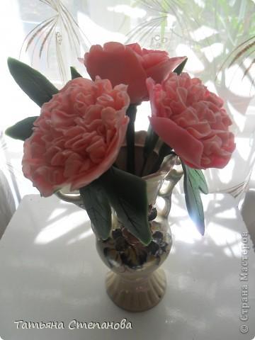 Пион-мой самый любимый цветок.  фото 2