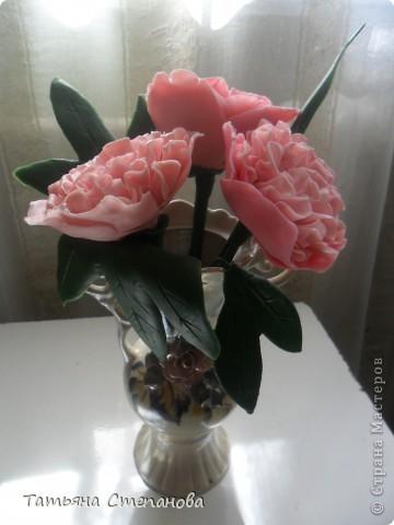 Пион-мой самый любимый цветок.  фото 4