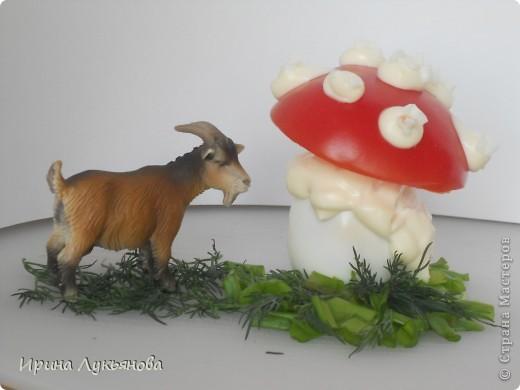 Козлова Александра, ученица 5А класса МБОУ СОШ №151.  Мухомор козе не страшен Вкусен он и безопасен, Потому что мухомор Из яйца и помидоров.