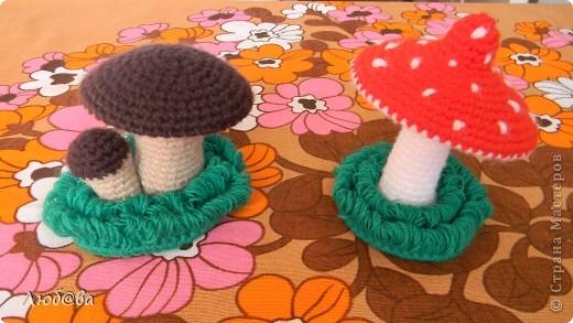 А у нас в садочке выросли грибочки