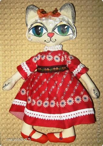 Многие шьют бермудскую кошку. Решила преобщиться к этому творчеству и я. фото 2