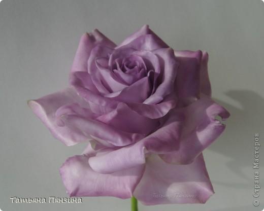 Давно хотела розу такого цвета, а тут еще и новую глину приобрела. Вот что у меня получилось. . Выполнена роза из полимерной тайской глины Flower Clay, по составу близкой к холодному фарфору. Очень приятная в работе.  фото 3